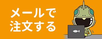 ayu_mail